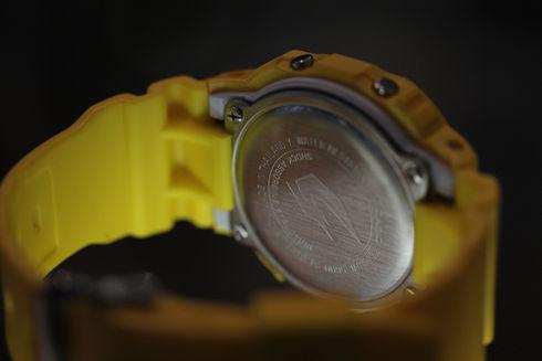 CASIO G-shock METALLIC-G DW-5600FL-9SJR【京都屋】