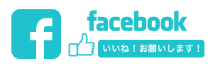 tokei facebook2