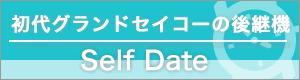 Self Data記事一覧