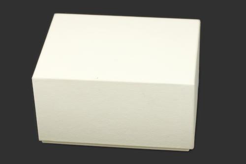 ロレックス デイトナ 116520 外箱