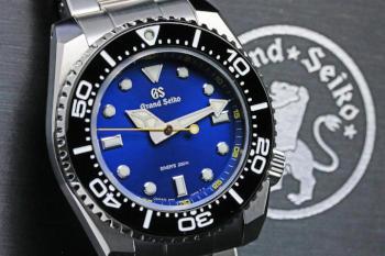 SBGX337